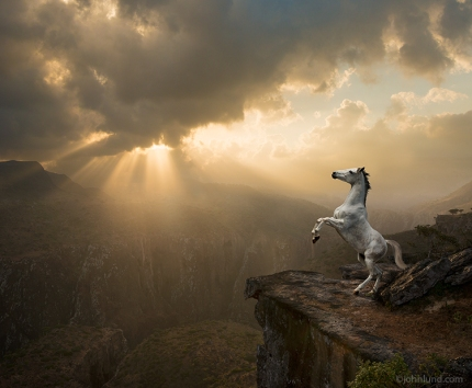 Rearing-White-Horse-On-Cliff