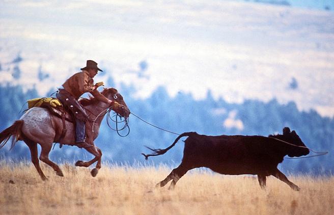 filtner+cowboy