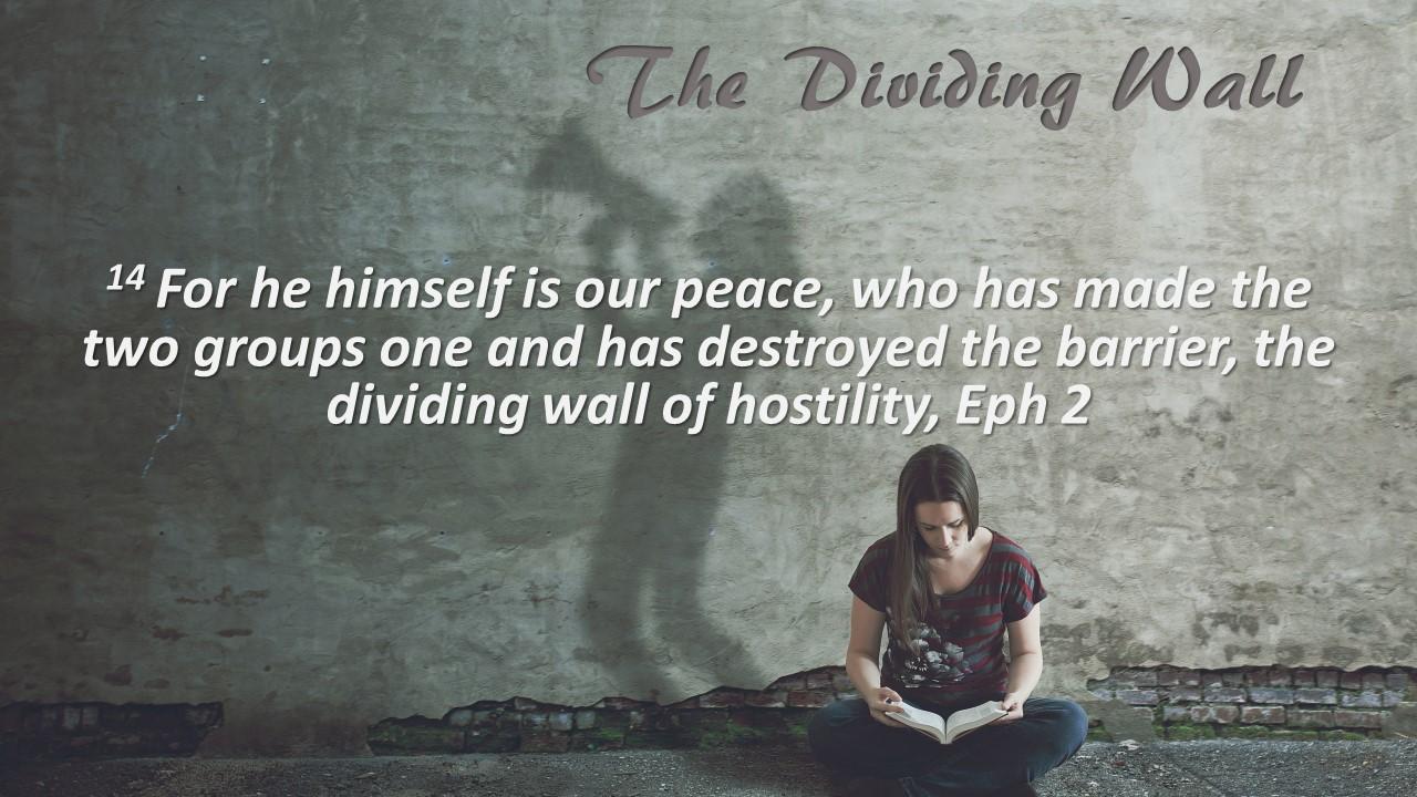 Dividing wall