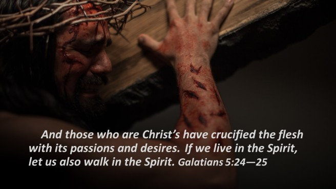 crucified the flesh