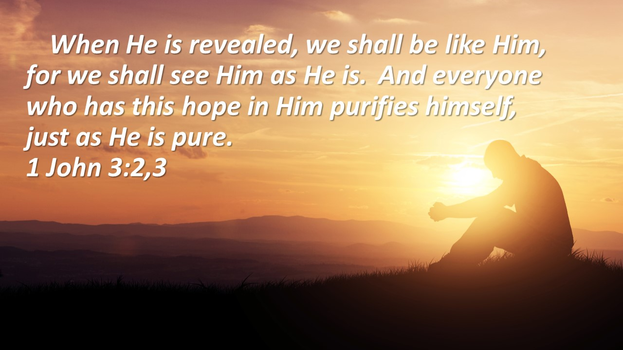 Pure in Christ