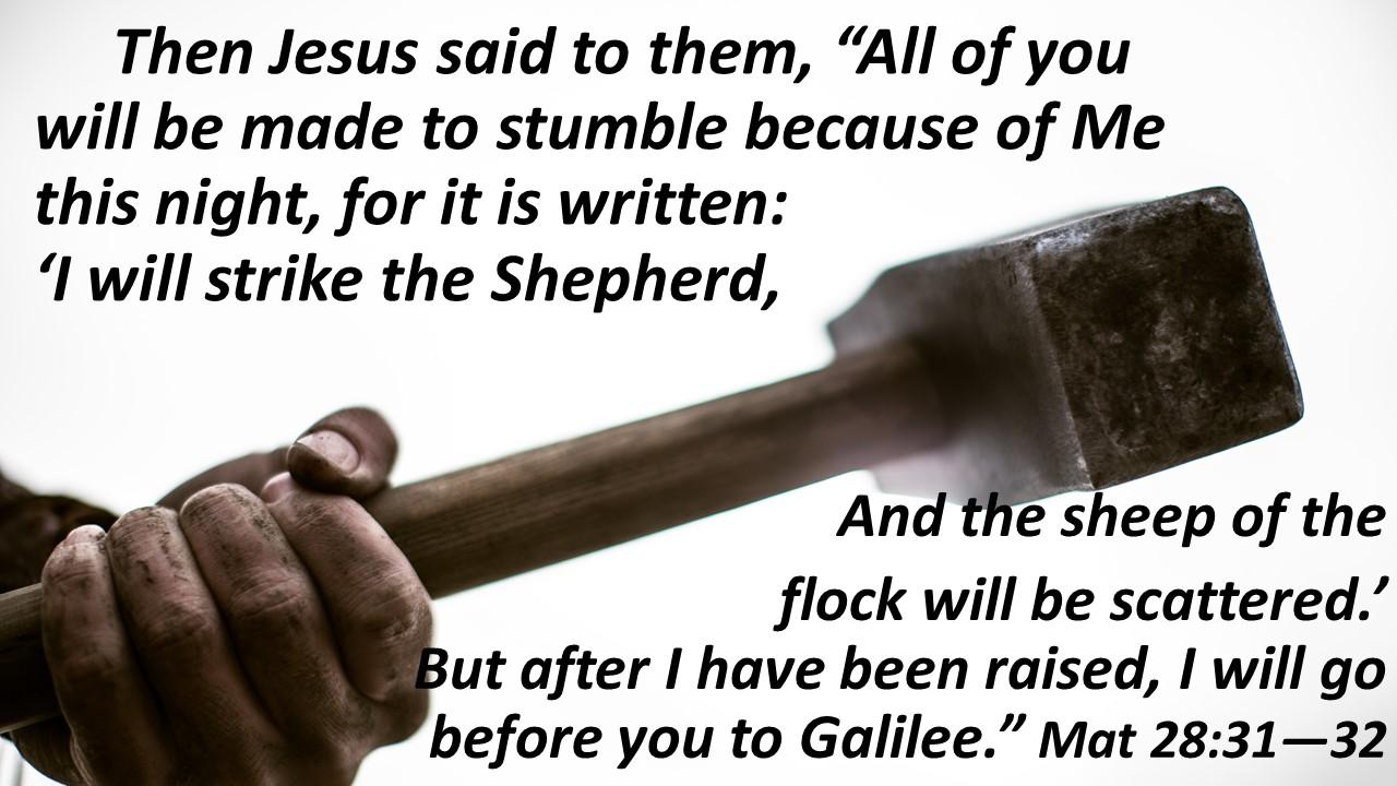 strike the shepherd hammer