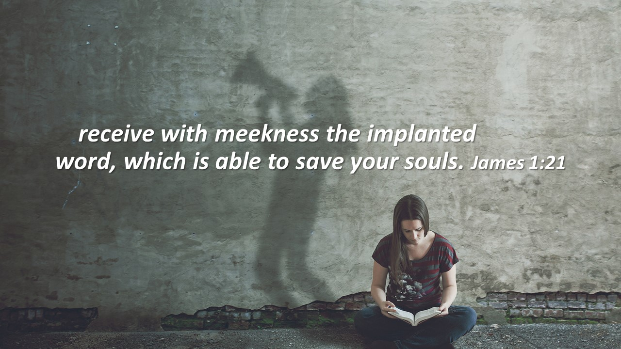recieve with meekness